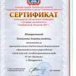 """Сертификат """"Лучший воспитатель Тамбовской области 2017"""""""