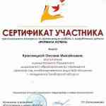 "Сертификат участника ""Формула успеха"""