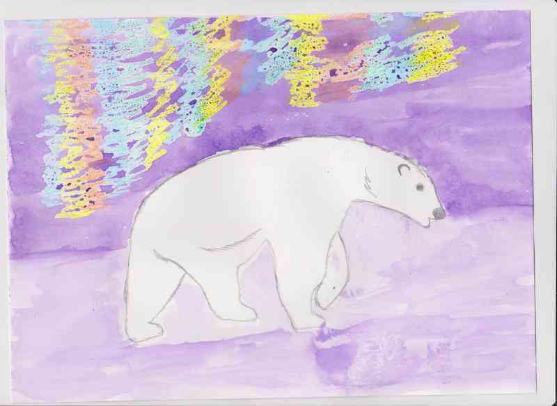 """""""Белый медведь"""" Зубкова У."""