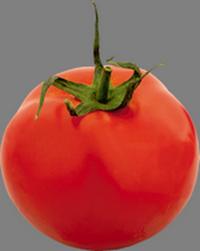 Помидор (томат).